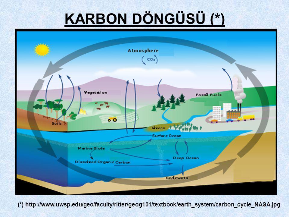 KARBON DÖNGÜSÜ (*) (*) http://www.uwsp.edu/geo/faculty/ritter/geog101/textbook/earth_system/carbon_cycle_NASA.jpg