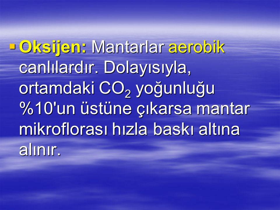  Oksijen: Mantarlar aerobik canlılardır.