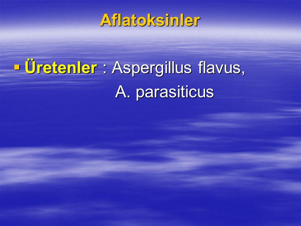 Aflatoksinler  Üretenler : Aspergillus flavus, A. parasiticus A. parasiticus