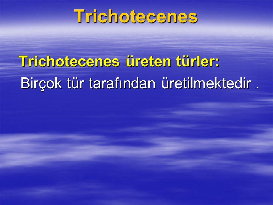 Tanıtımı ve yapısı Tanıtımı ve yapısı Trichotecenes toksinleri Fusarium, Cephalosporium, Myrothecium, Trichoderma, ve Stachybotrys gruplarına dahil, özellikle kimyasal bileşik üretimi ile ilişkili olan türler tarafından üretilir.