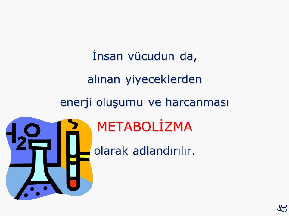 İnsan vücudun da, alınan yiyeceklerden enerji oluşumu ve harcanması METABOLİZMA olarak adlandırılır. 