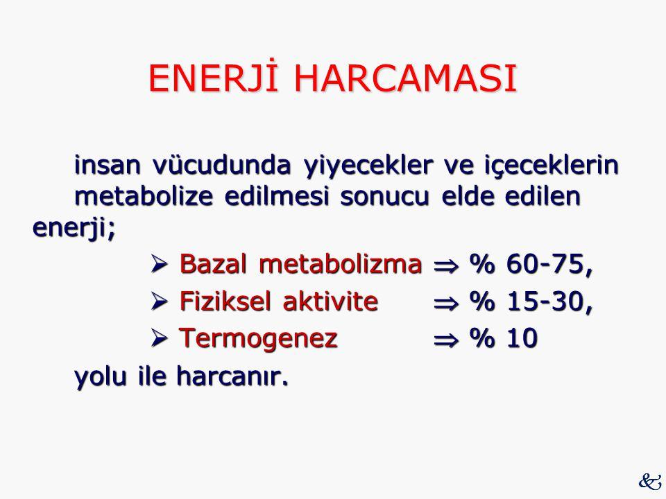 ENERJİ HARCAMASI insan vücudunda yiyecekler ve içeceklerin metabolize edilmesi sonucu elde edilen enerji;  Bazal metabolizma  % 60-75,  Bazal metab