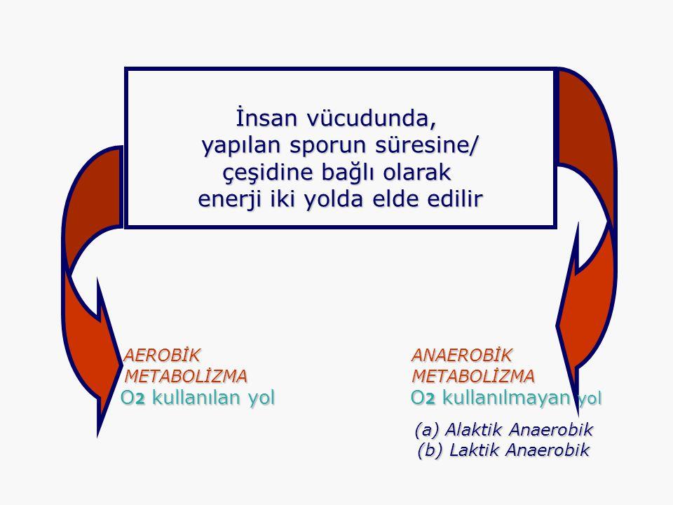 İnsan vücudunda, yapılan sporun süresine/ yapılan sporun süresine/ çeşidine bağlı olarak enerji iki yolda elde edilir enerji iki yolda elde edilir AER