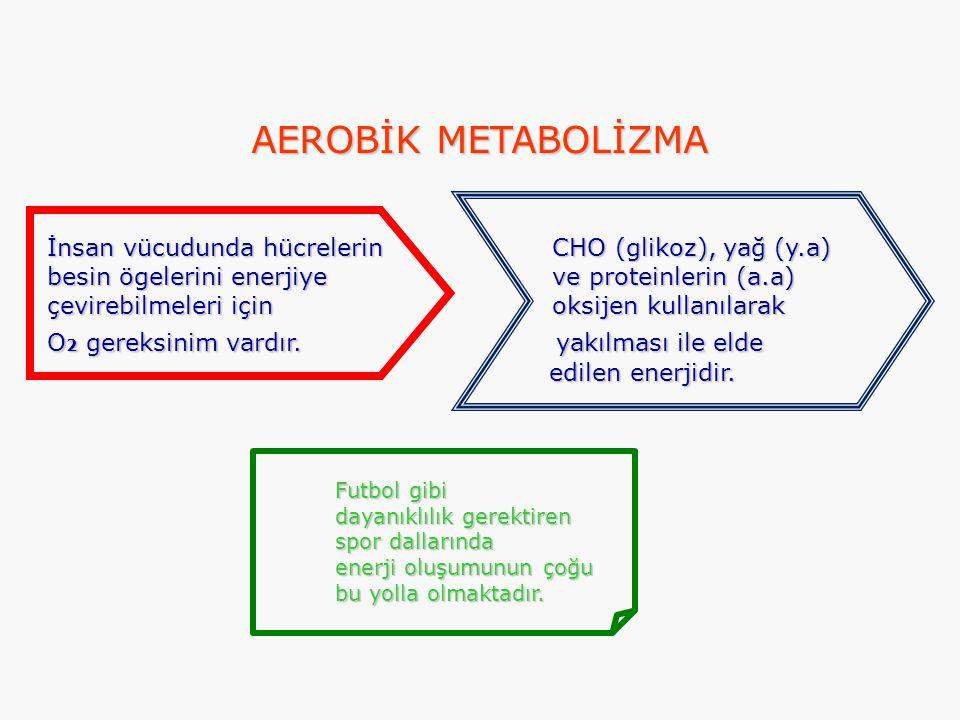 AEROBİK METABOLİZMA İnsan vücudunda hücrelerin CHO (glikoz), yağ (y.a) besin ögelerini enerjiye ve proteinlerin (a.a) çevirebilmeleri için oksijen kul