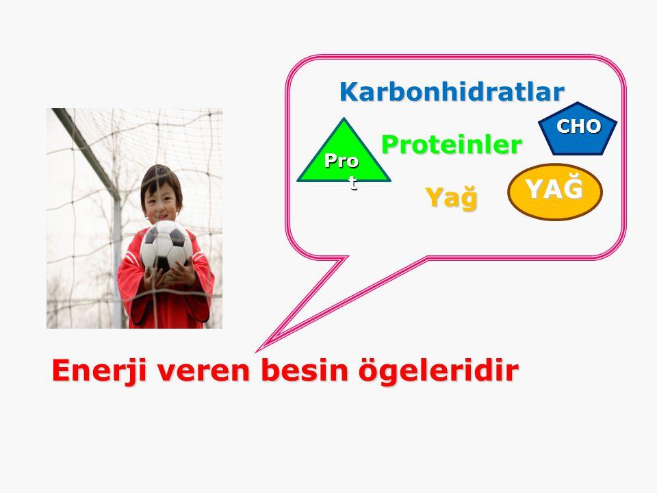 KarbonhidratlarProteinlerYağ Enerji veren besin ögeleridir CHO Pro t YAĞ