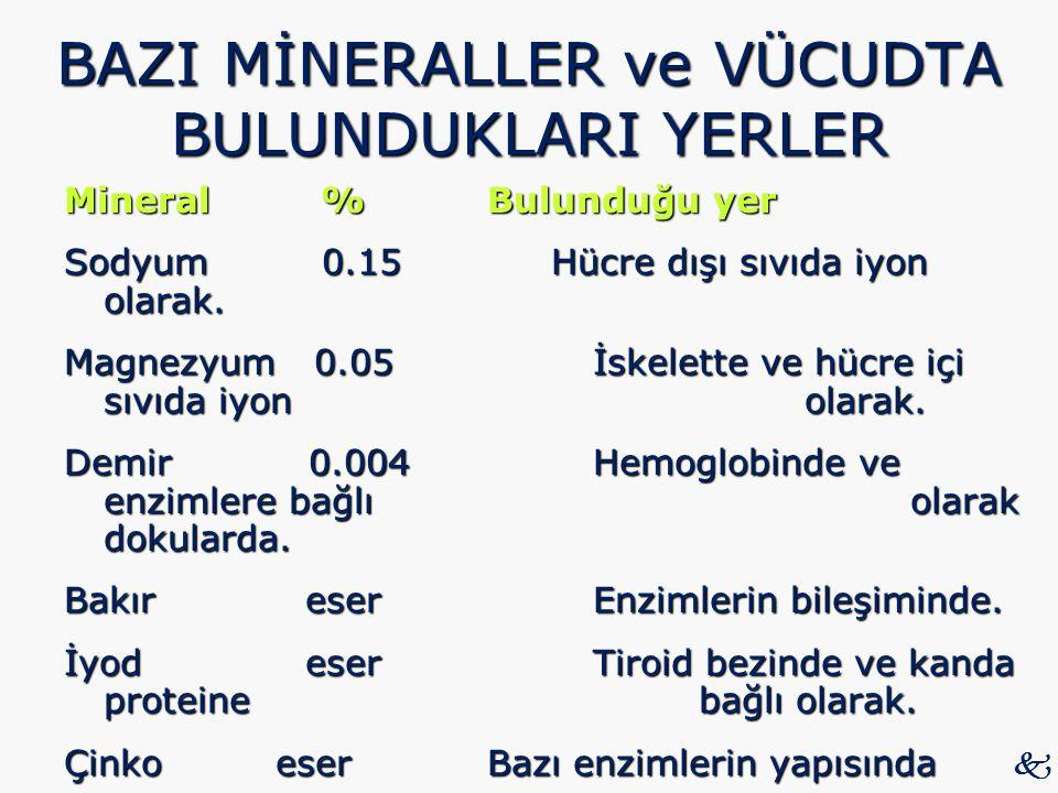 BAZI MİNERALLER ve VÜCUDTA BULUNDUKLARI YERLER Mineral % Bulunduğu yer Sodyum 0.15 Hücre dışı sıvıda iyon olarak. Magnezyum 0.05 İskelette ve hücre iç