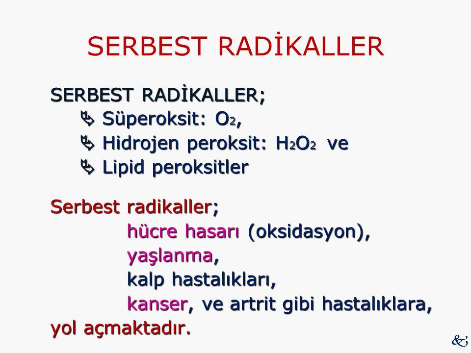 SERBEST RADİKALLER SERBEST RADİKALLER;  Süperoksit: O 2,  Hidrojen peroksit: H 2 O 2 ve  Lipid peroksitler Serbest radikaller; hücre hasarı (oksida