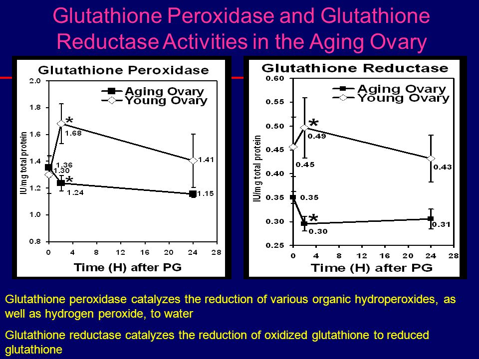 Glutathione Peroxidase and Glutathione Reductase Activities in the Aging Ovary Glutathione peroxidase catalyzes the reduction of various organic hydro