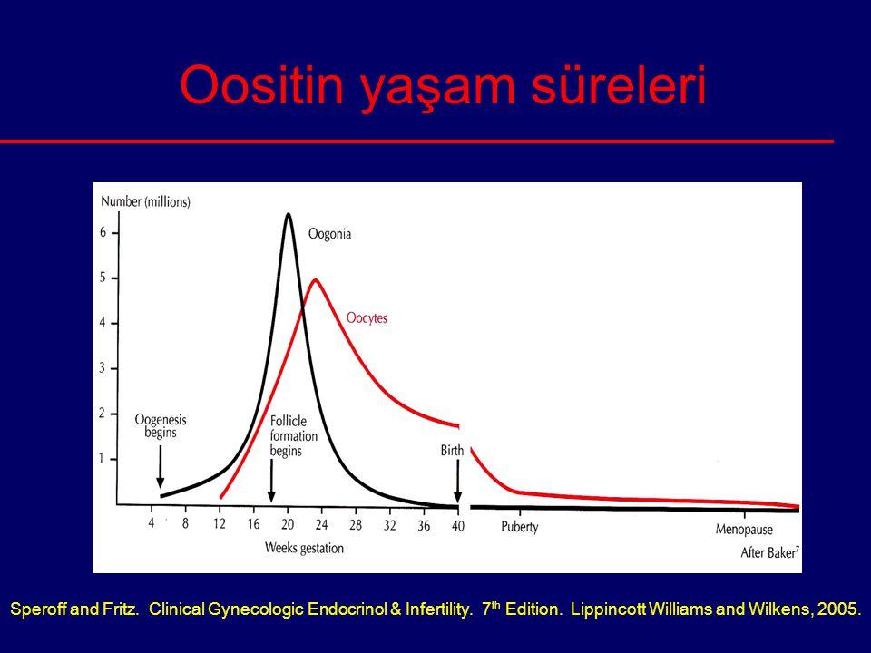 Oositin yaşam süreleri Speroff and Fritz. Clinical Gynecologic Endocrinol & Infertility. 7 th Edition. Lippincott Williams and Wilkens, 2005.