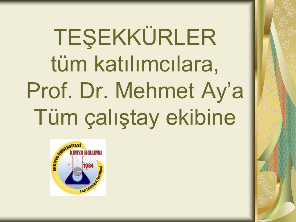 TEŞEKKÜRLER tüm katılımcılara, Prof. Dr. Mehmet Ay'a Tüm çalıştay ekibine