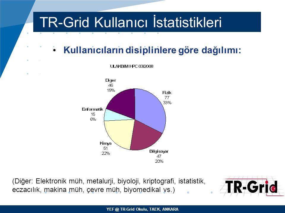 YEF @ TR-Grid Okulu, TAEK, ANKARA TR-Grid Kullanıcı İstatistikleri Kullanıcıların disiplinlere göre dağılımı: (Diğer: Elektronik müh, metalurji, biyol