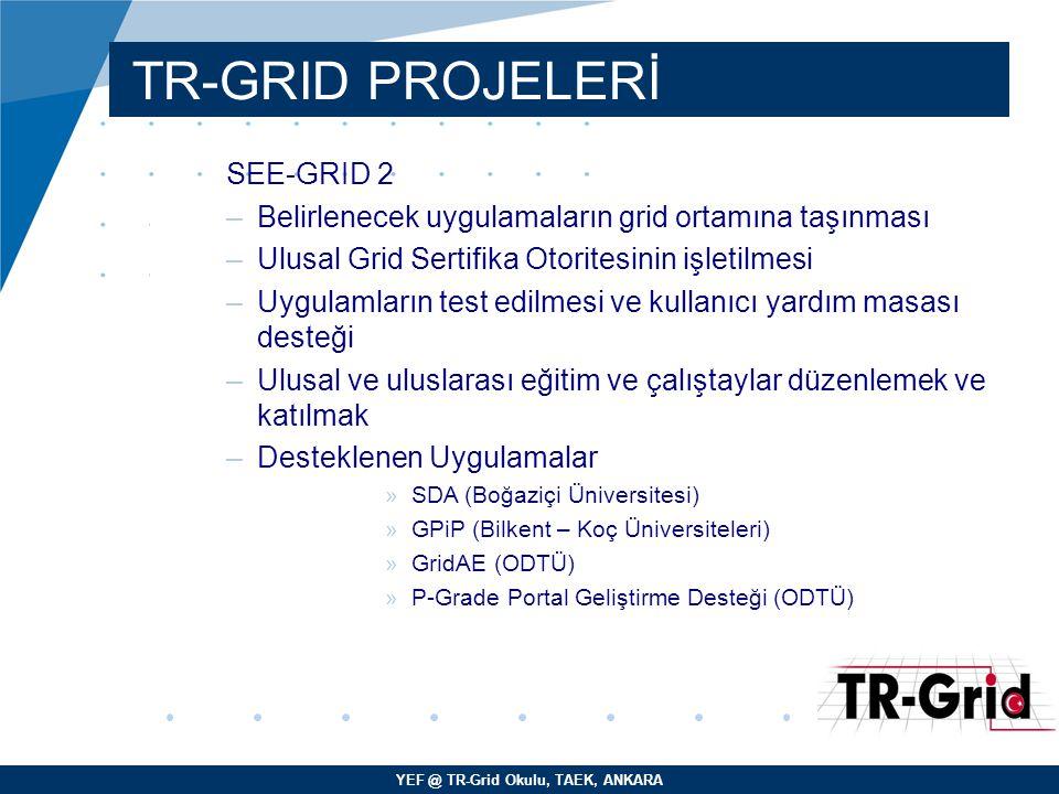 YEF @ TR-Grid Okulu, TAEK, ANKARA TR-GRID PROJELERİ SEE-GRID 2 –Belirlenecek uygulamaların grid ortamına taşınması –Ulusal Grid Sertifika Otoritesinin