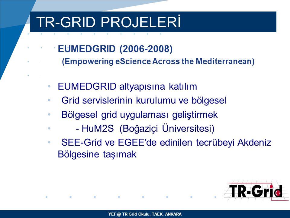 YEF @ TR-Grid Okulu, TAEK, ANKARA TR-GRID PROJELERİ EUMEDGRID (2006-2008) (Empowering eScience Across the Mediterranean) EUMEDGRID altyapısına katıl