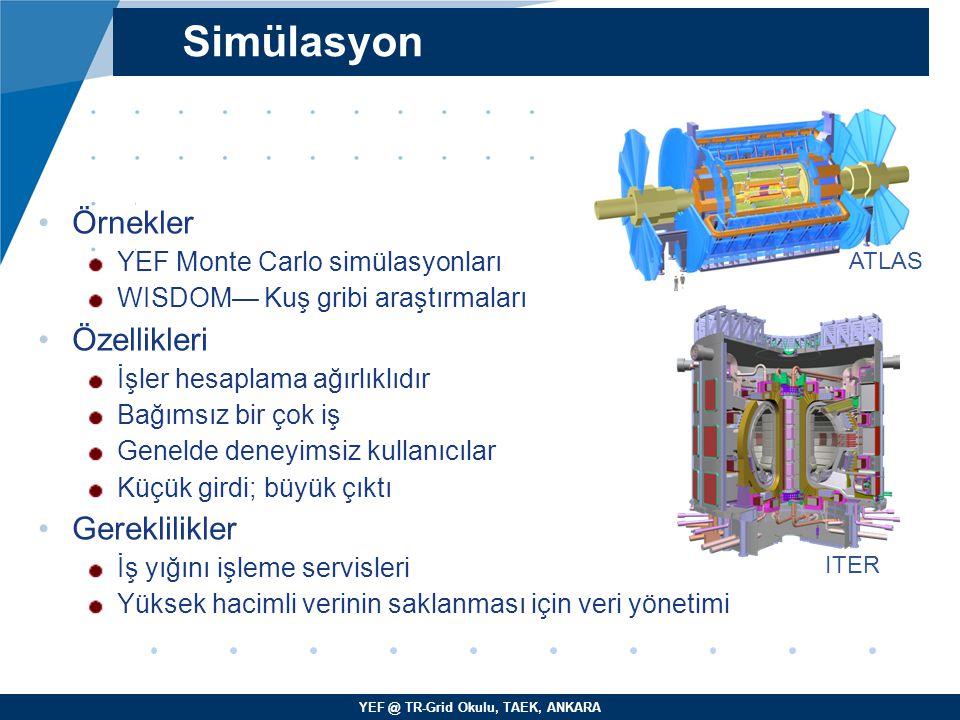 YEF @ TR-Grid Okulu, TAEK, ANKARA Örnekler YEF Monte Carlo simülasyonları WISDOM— Kuş gribi araştırmaları Özellikleri İşler hesaplama ağırlıklıdır Bağ