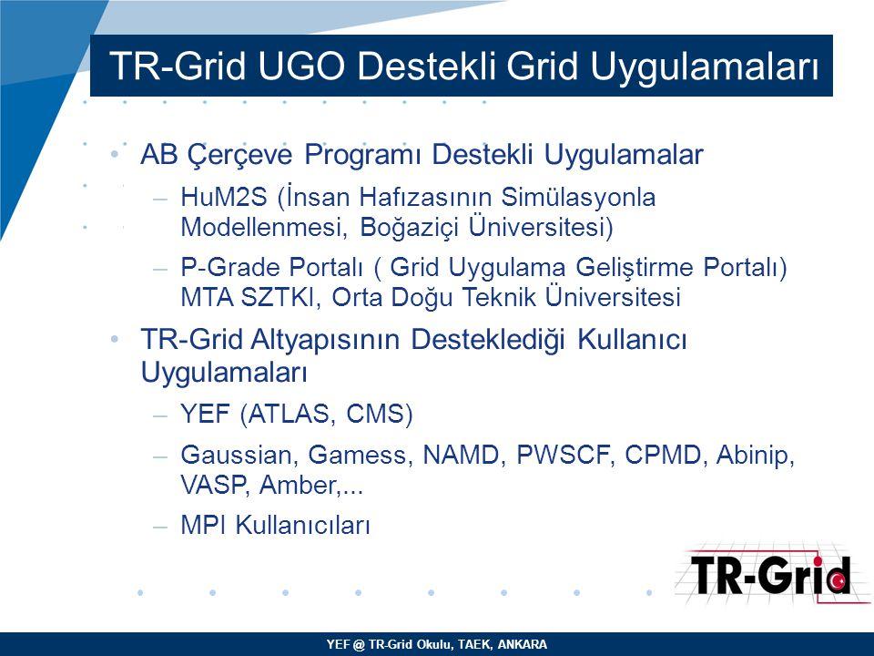 YEF @ TR-Grid Okulu, TAEK, ANKARA TR-Grid UGO Destekli Grid Uygulamaları AB Çerçeve Programı Destekli Uygulamalar –HuM2S (İnsan Hafızasının Simülasyon