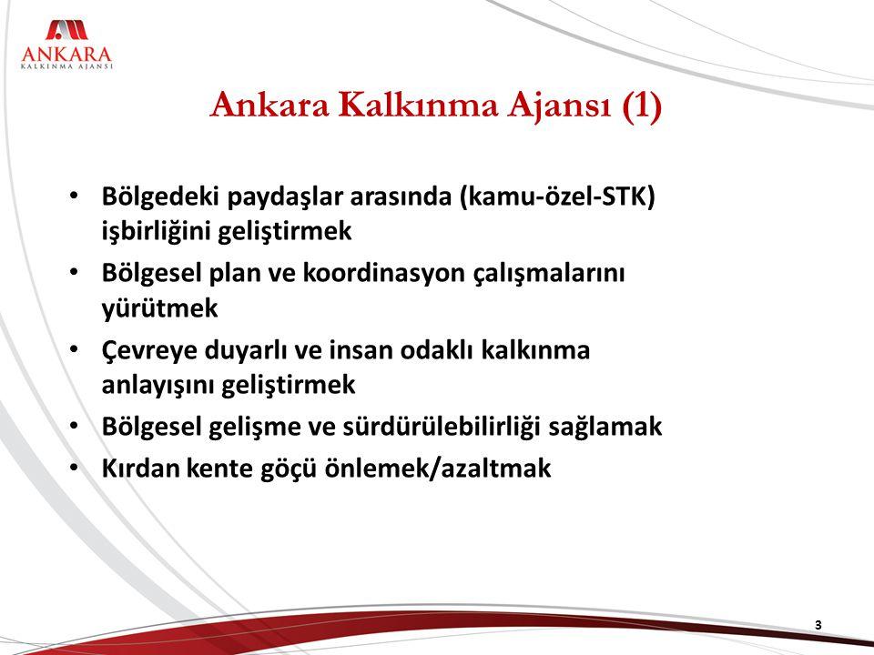 Ankara Kalkınma Ajansı (1) Bölgedeki paydaşlar arasında (kamu-özel-STK) işbirliğini geliştirmek Bölgesel plan ve koordinasyon çalışmalarını yürütmek Çevreye duyarlı ve insan odaklı kalkınma anlayışını geliştirmek Bölgesel gelişme ve sürdürülebilirliği sağlamak Kırdan kente göçü önlemek/azaltmak 3