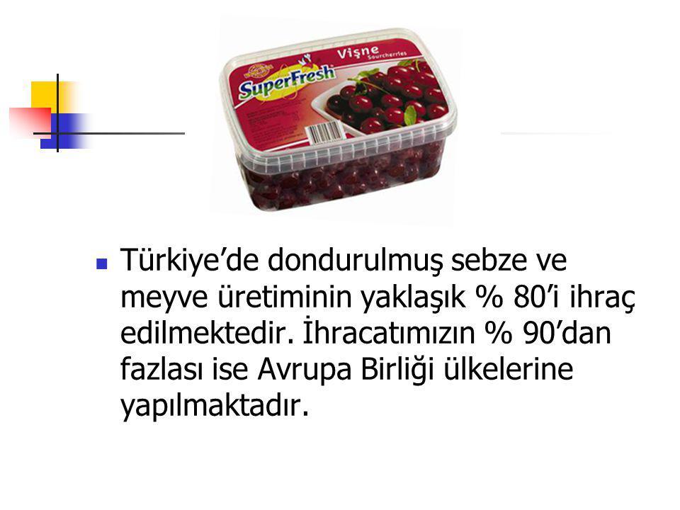Türkiye'de dondurulmuş sebze ve meyve üretiminin yaklaşık % 80'i ihraç edilmektedir. İhracatımızın % 90'dan fazlası ise Avrupa Birliği ülkelerine yapı