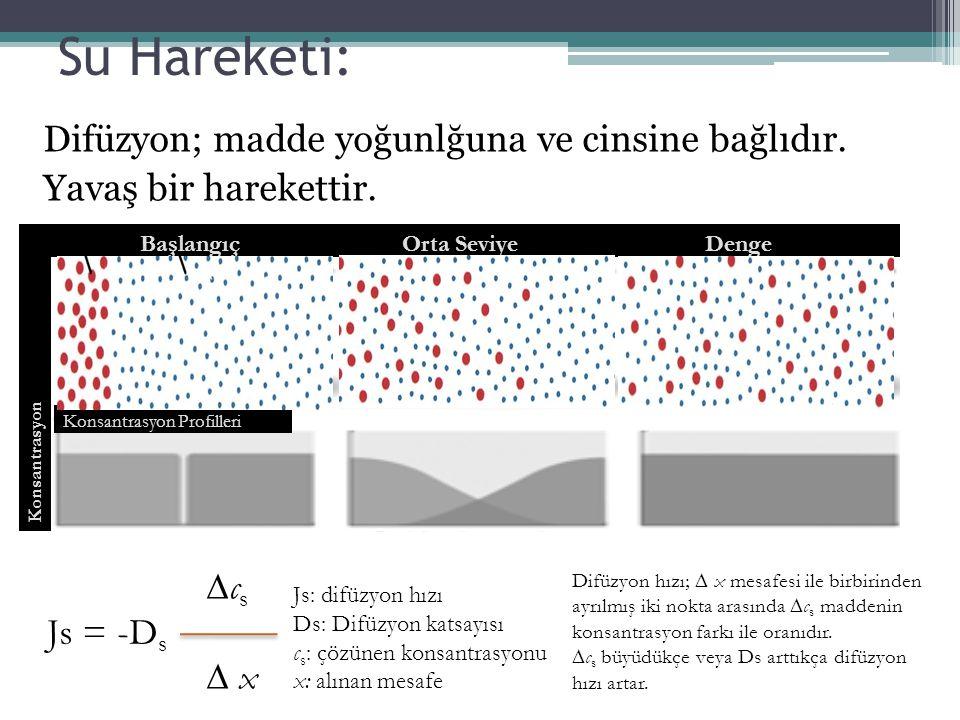 Su Hareketi: Difüzyon; madde yoğunlğuna ve cinsine bağlıdır. Yavaş bir harekettir. ∆c s Js = -D s ∆ x Js: difüzyon hızı Ds: Difüzyon katsayısı c s : ç