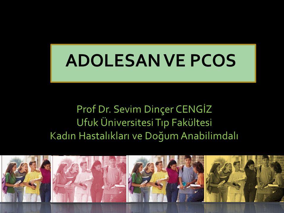 Prof Dr. Sevim Dinçer CENGİZ Ufuk Üniversitesi Tıp Fakültesi Kadın Hastalıkları ve Doğum Anabilimdalı