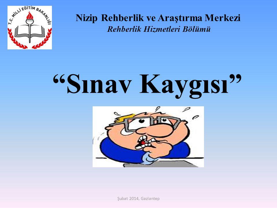 """""""Sınav Kaygısı"""" Nizip Rehberlik ve Araştırma Merkezi Rehberlik Hizmetleri Bölümü Şubat 2014, Gaziantep"""
