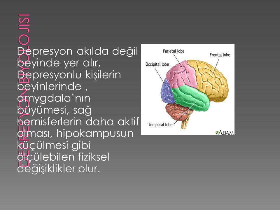 Depresyon akılda değil beyinde yer alır.