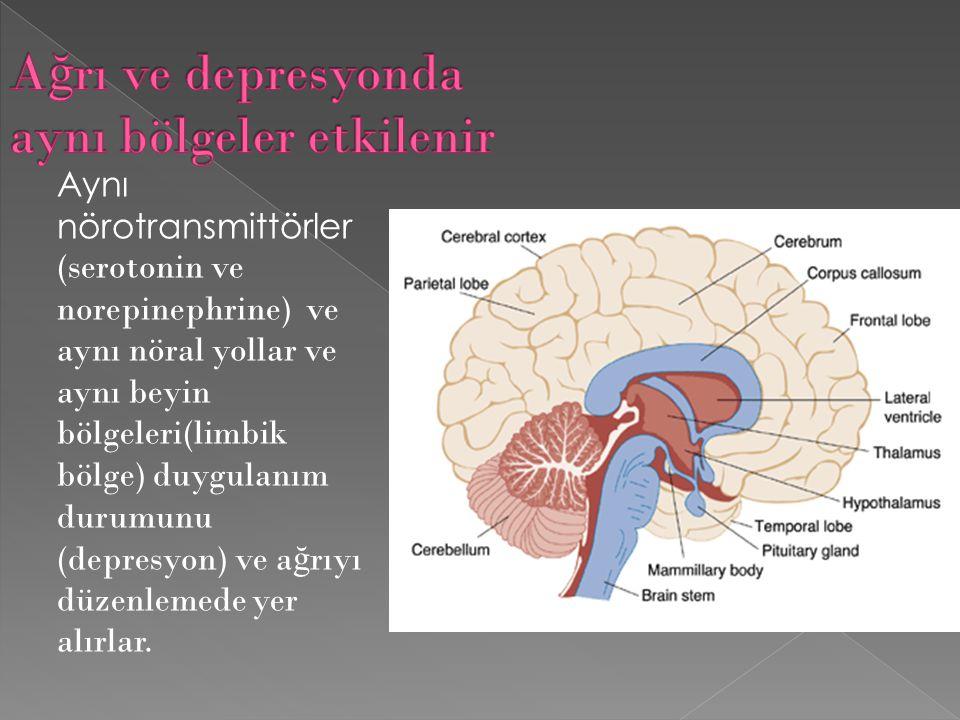 Aynı nörotransmittörler (serotonin ve norepinephrine) ve aynı nöral yollar ve aynı beyin bölgeleri(limbik bölge) duygulanım durumunu (depresyon) ve a ğ rıyı düzenlemede yer alırlar.