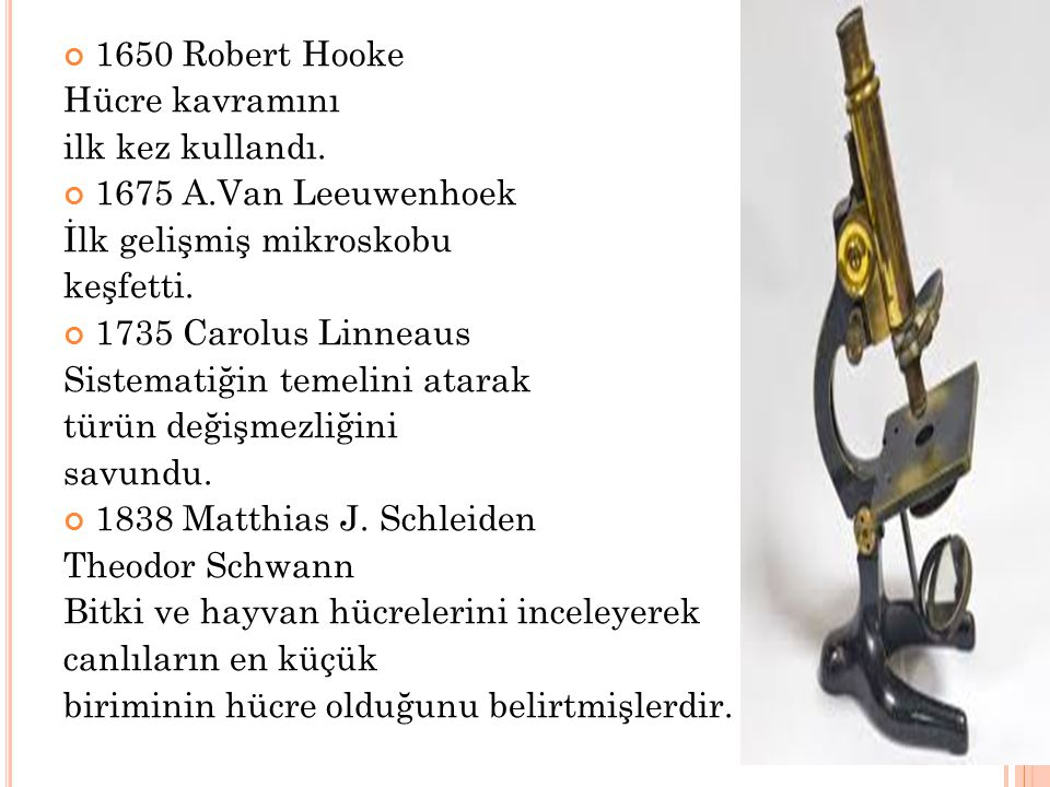 1650 Robert Hooke Hücre kavramını ilk kez kullandı. 1675 A.Van Leeuwenhoek İlk gelişmiş mikroskobu keşfetti. 1735 Carolus Linneaus Sistematiğin temeli