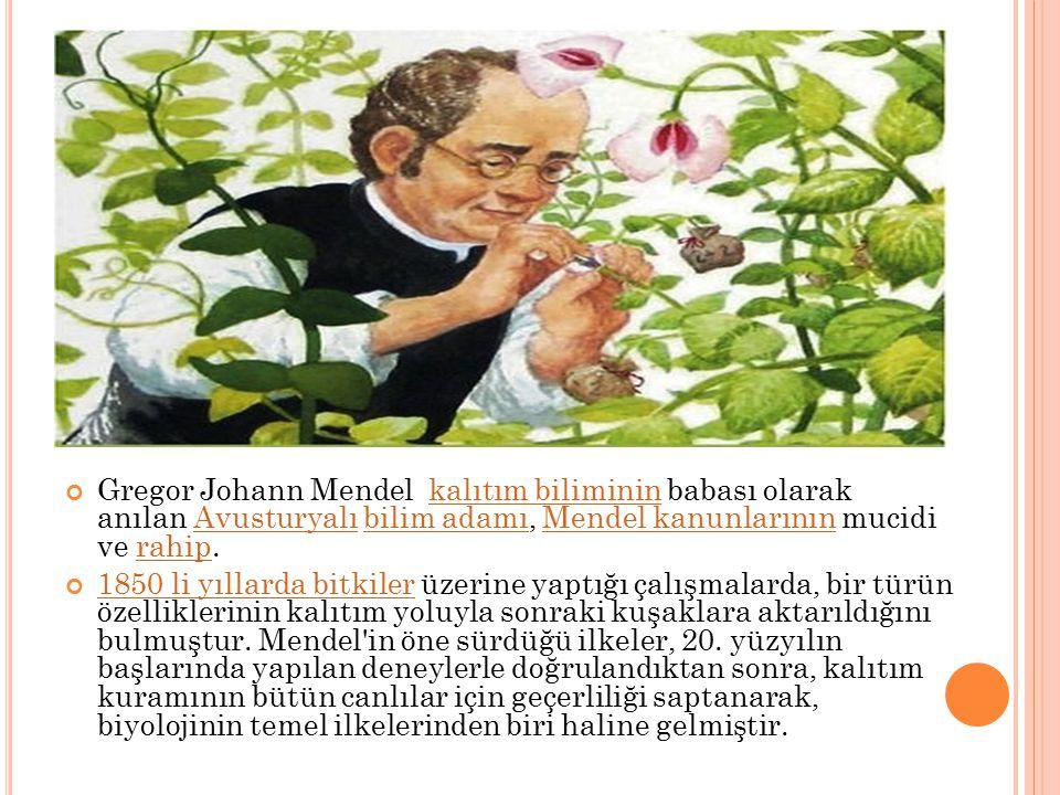 Gregor Johann Mendel kalıtım biliminin babası olarak anılan Avusturyalı bilim adamı, Mendel kanunlarının mucidi ve rahip.kalıtım bilimininAvusturyalıb
