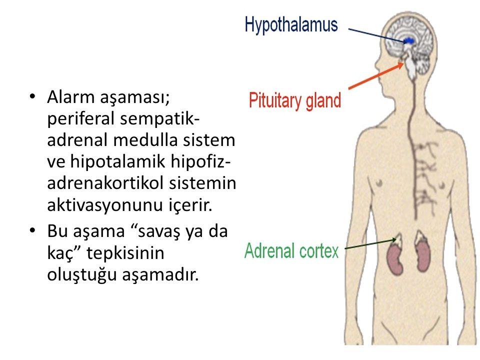 """Alarm aşaması; periferal sempatik- adrenal medulla sistem ve hipotalamik hipofiz- adrenakortikol sistemin aktivasyonunu içerir. Bu aşama """"savaş ya da"""