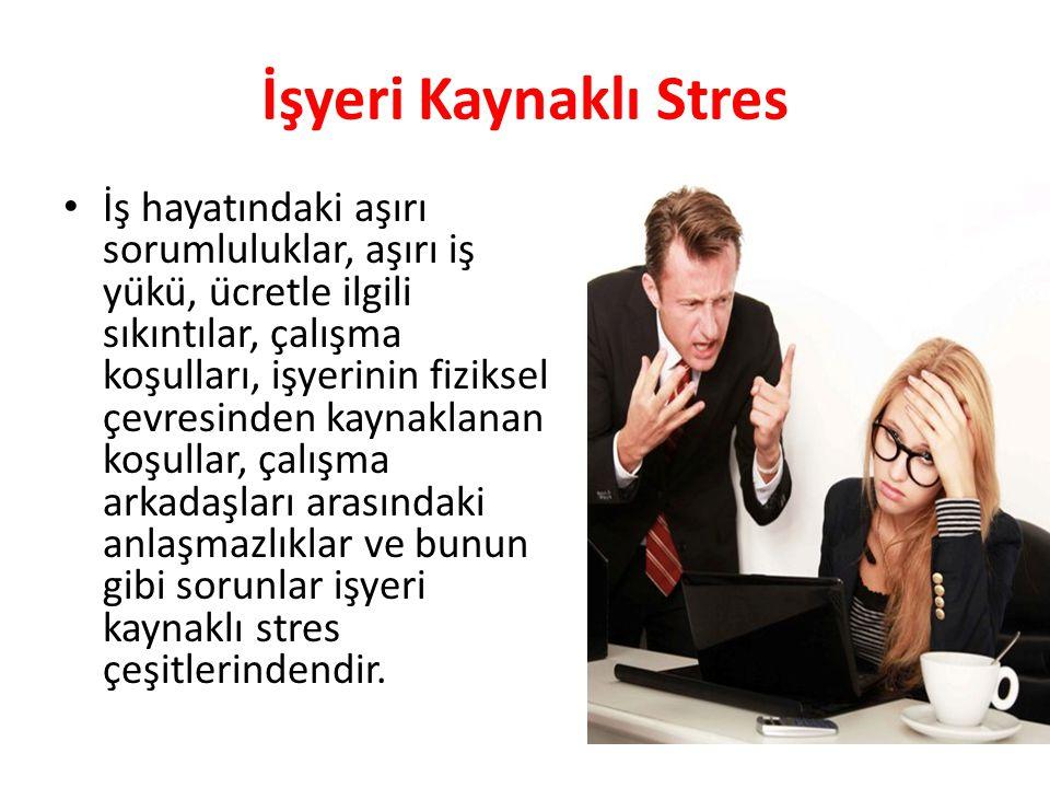 İşyeri Kaynaklı Stres İş hayatındaki aşırı sorumluluklar, aşırı iş yükü, ücretle ilgili sıkıntılar, çalışma koşulları, işyerinin fiziksel çevresind