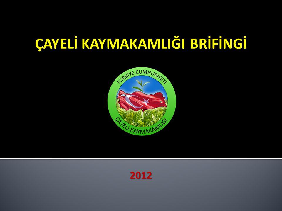 ÇAYELİ KAYMAKAMLIĞI BRİFİNGİ 2012