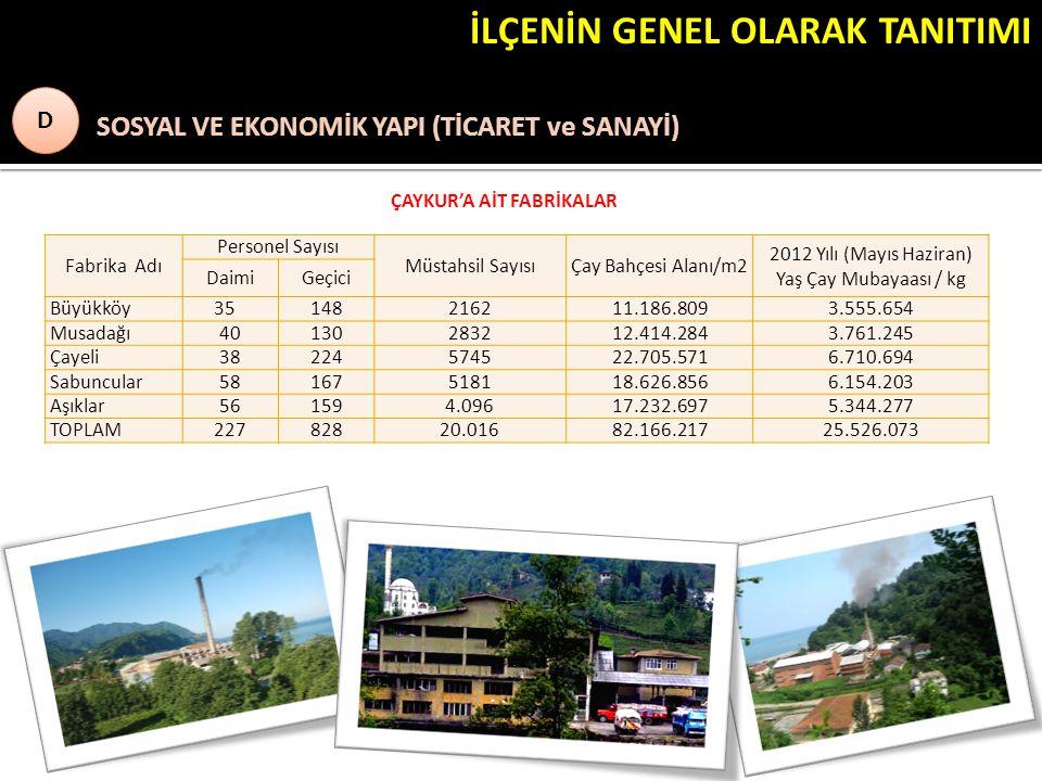 İLÇENİN GENEL OLARAK TANITIMI ) SOSYAL VE EKONOMİK YAPI (TİCARET ve SANAYİ) D D ÇAYKUR'A AİT FABRİKALAR Fabrika Adı Personel Sayısı Müstahsil SayısıÇay Bahçesi Alanı/m2 2012 Yılı (Mayıs Haziran) Yaş Çay Mubayaası / kg DaimiGeçici Büyükköy 35148216211.186.8093.555.654 Musadağı40130283212.414.2843.761.245 Çayeli38224574522.705.5716.710.694 Sabuncular58167518118.626.8566.154.203 Aşıklar561594.09617.232.6975.344.277 TOPLAM22782820.01682.166.21725.526.073