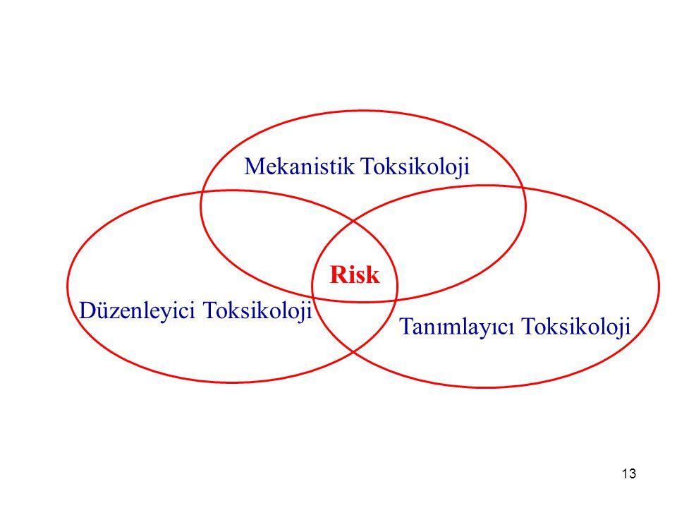 13 Mekanistik Toksikoloji Düzenleyici Toksikoloji Tanımlayıcı Toksikoloji Risk