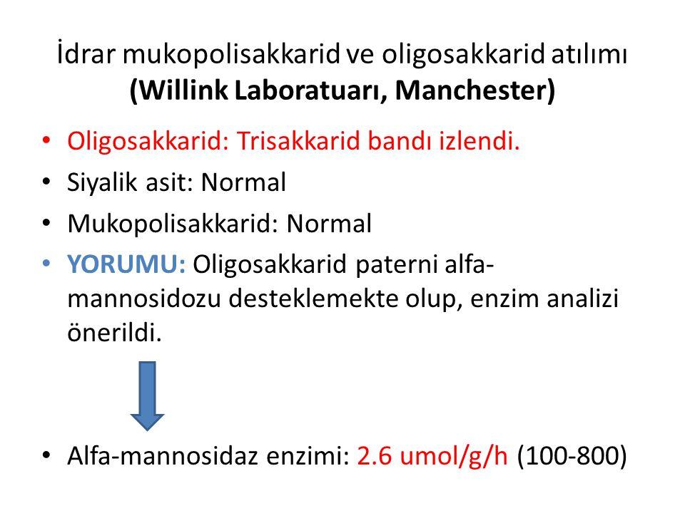 İdrar mukopolisakkarid ve oligosakkarid atılımı (Willink Laboratuarı, Manchester) Oligosakkarid: Trisakkarid bandı izlendi. Siyalik asit: Normal Mukop