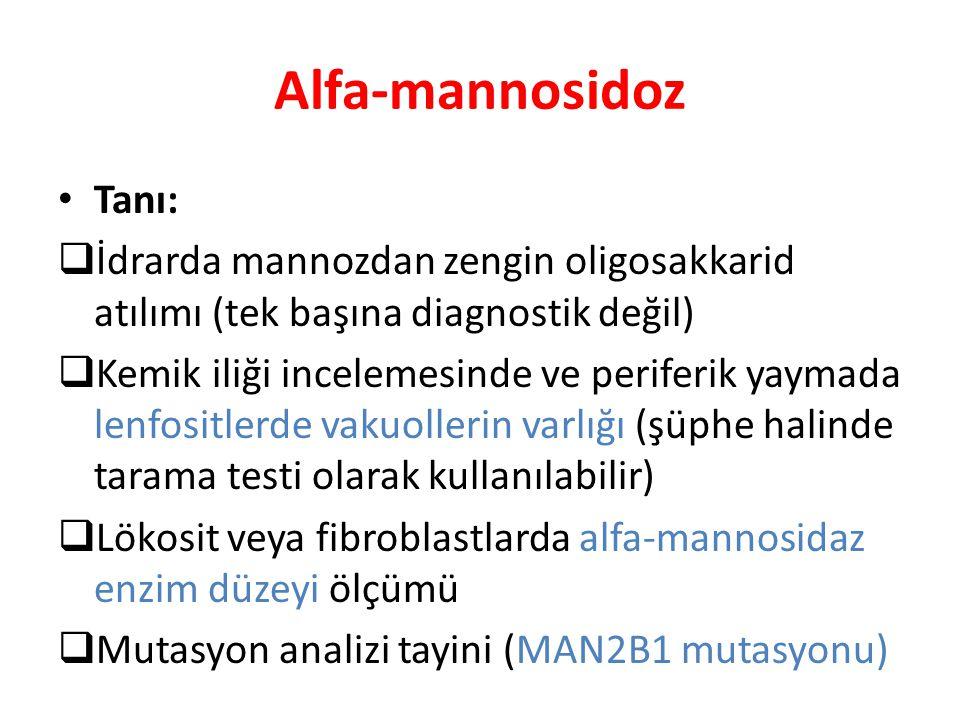 Alfa-mannosidoz Tanı:  İdrarda mannozdan zengin oligosakkarid atılımı (tek başına diagnostik değil)  Kemik iliği incelemesinde ve periferik yaymada