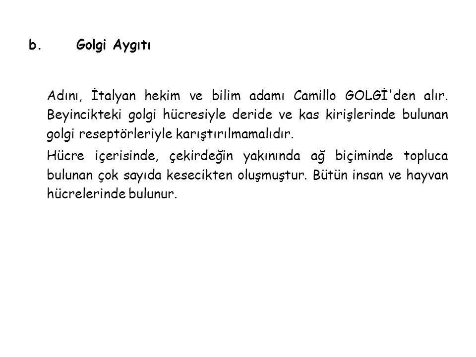 b.Golgi Aygıtı Adını, İtalyan hekim ve bilim adamı Camillo GOLGİ den alır.