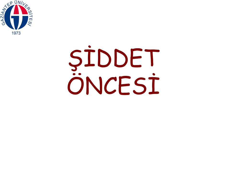 ŞİDDET ÖNCESİ 14
