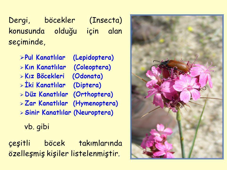Dergi, böcekler (Insecta) konusunda olduğu için alan seçiminde,  Pul Kanatlılar (Lepidoptera)  Kın Kanatlılar (Coleoptera)  Kız Böcekleri (Odonata)