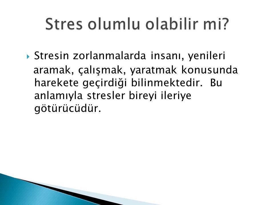  Stresin zorlanmalarda insanı, yenileri aramak, çalışmak, yaratmak konusunda harekete geçirdiği bilinmektedir. Bu anlamıyla stresler bireyi ileriye g