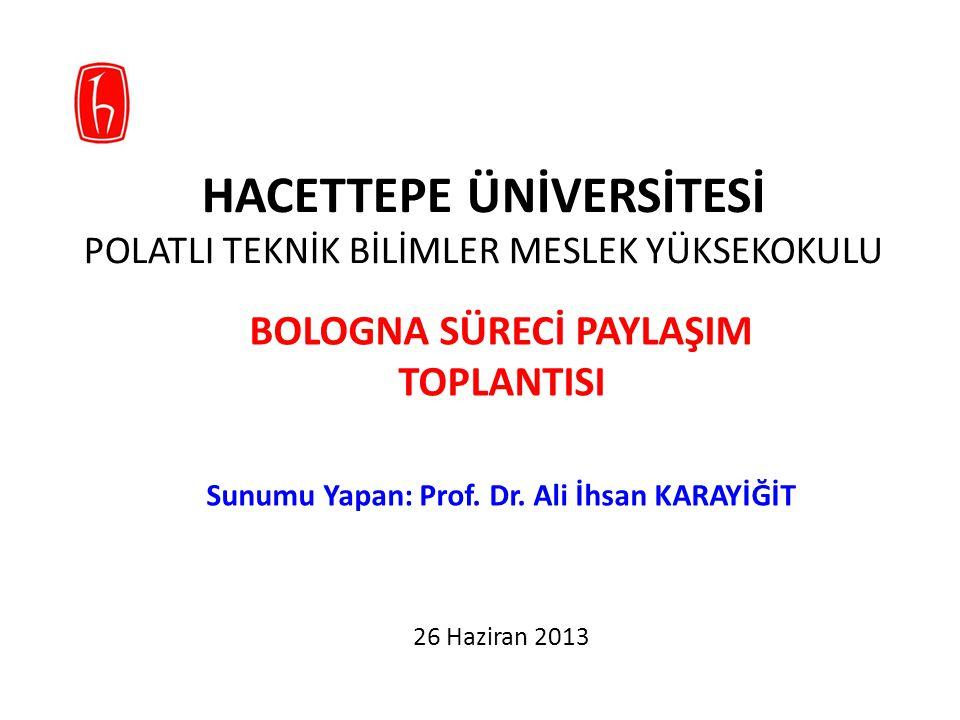 BOLOGNA ÇALIŞMALARI, Mayıs-Temmuz 2012