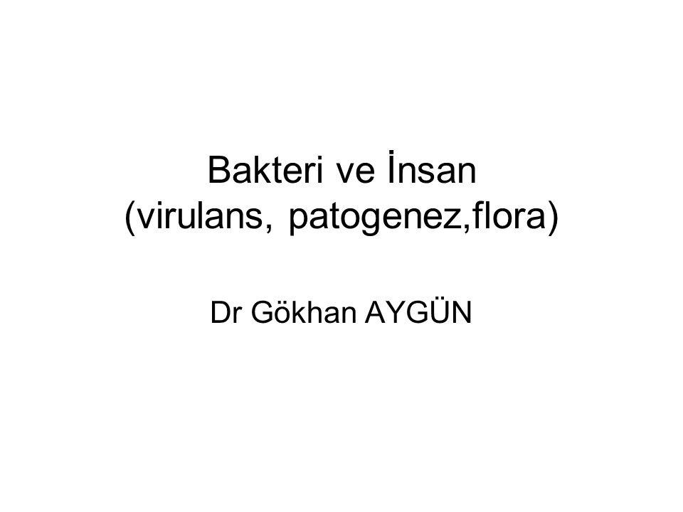 Bakteri ve İnsan (virulans, patogenez,flora) Dr Gökhan AYGÜN
