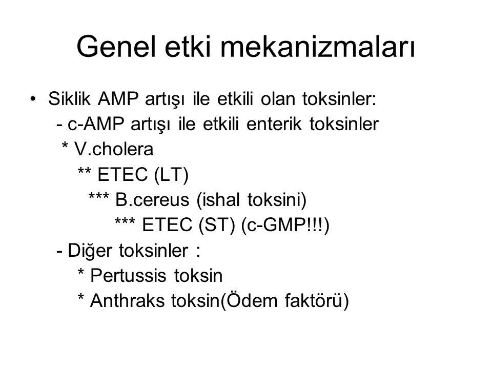 Genel etki mekanizmaları Siklik AMP artışı ile etkili olan toksinler: - c-AMP artışı ile etkili enterik toksinler * V.cholera ** ETEC (LT) *** B.cereus (ishal toksini) *** ETEC (ST) (c-GMP!!!) - Diğer toksinler : * Pertussis toksin * Anthraks toksin(Ödem faktörü)