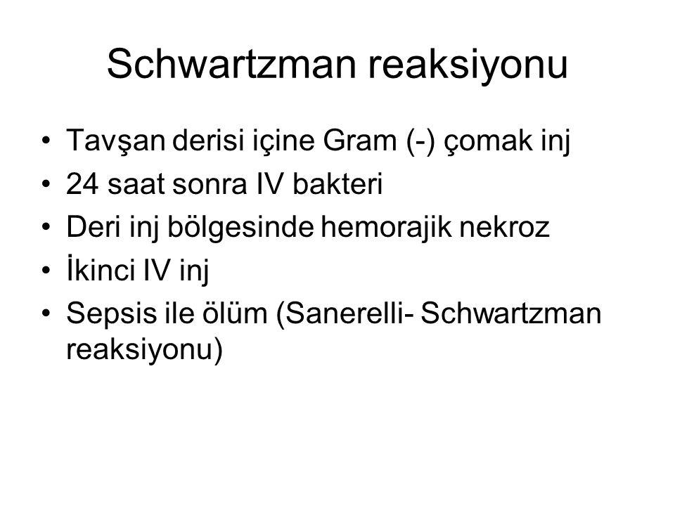 Schwartzman reaksiyonu Tavşan derisi içine Gram (-) çomak inj 24 saat sonra IV bakteri Deri inj bölgesinde hemorajik nekroz İkinci IV inj Sepsis ile ölüm (Sanerelli- Schwartzman reaksiyonu)