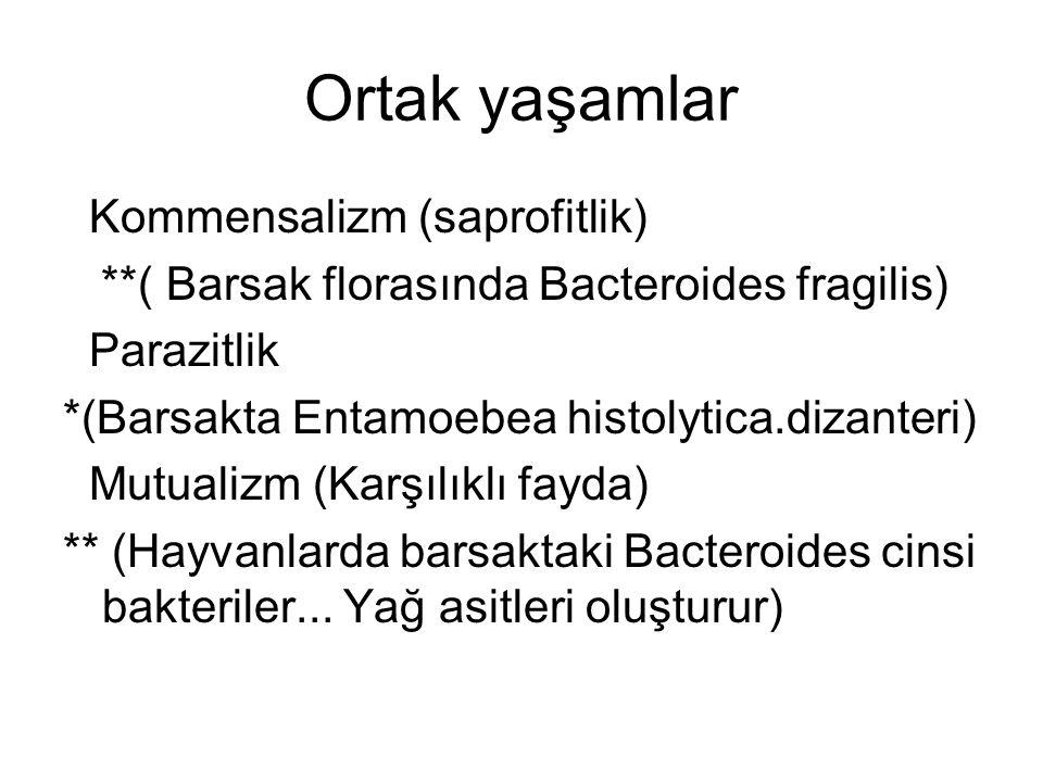Ortak yaşamlar Kommensalizm (saprofitlik) **( Barsak florasında Bacteroides fragilis) Parazitlik *(Barsakta Entamoebea histolytica.dizanteri) Mutualizm (Karşılıklı fayda) ** (Hayvanlarda barsaktaki Bacteroides cinsi bakteriler...