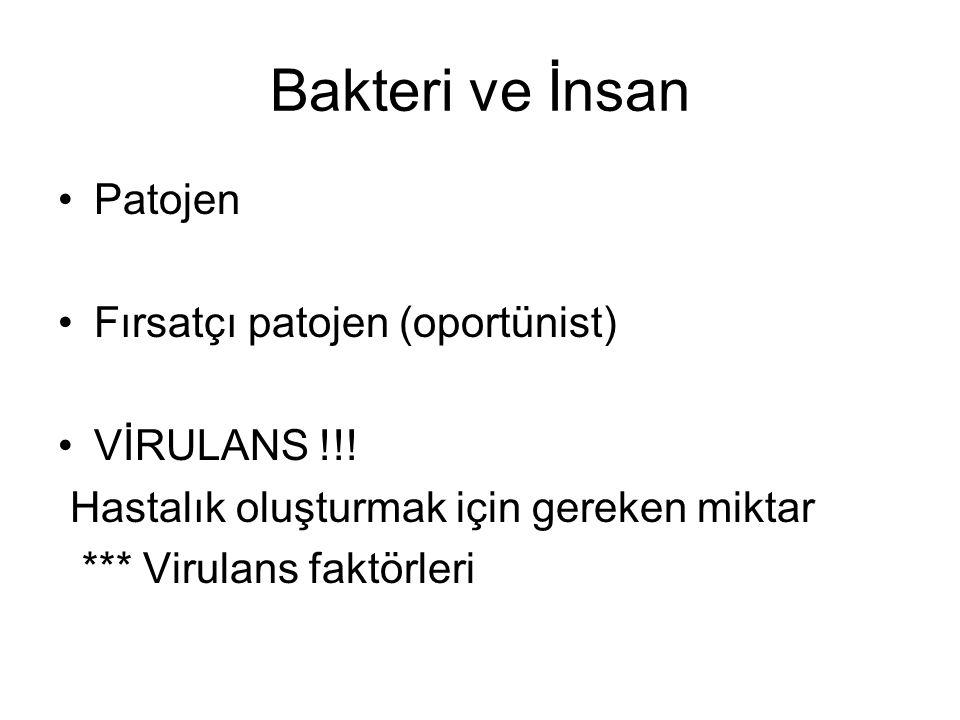 Bakteri ve İnsan Patojen Fırsatçı patojen (oportünist) VİRULANS !!.