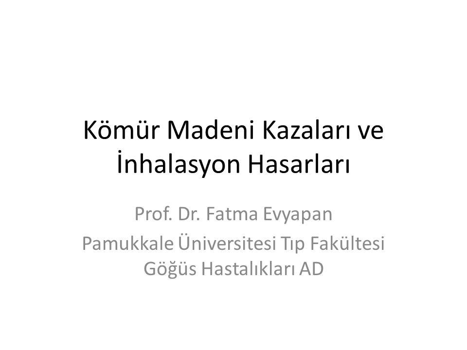 Kömür Madeni Kazaları ve İnhalasyon Hasarları Prof. Dr. Fatma Evyapan Pamukkale Üniversitesi Tıp Fakültesi Göğüs Hastalıkları AD