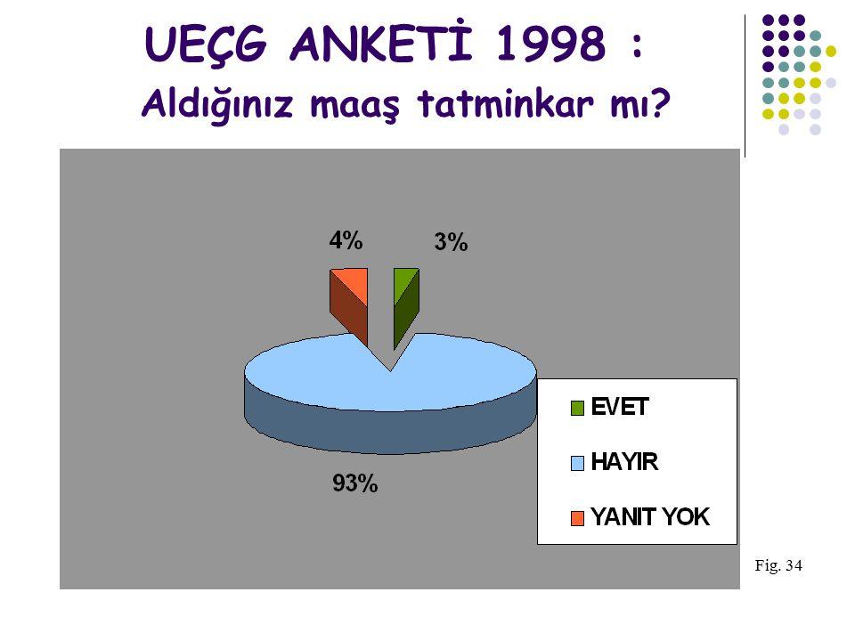 UEÇG ANKETİ 1998: Kurumunuzdaki eğitim olanakları yeterli mi? Fig. 16