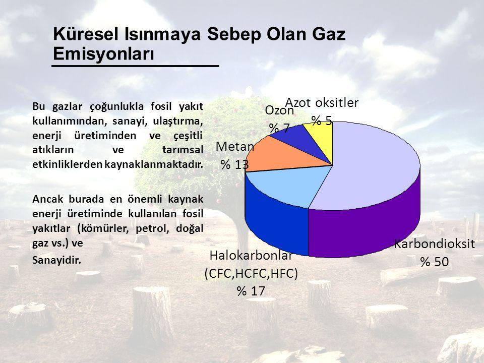 Küresel Isınmaya Sebep Olan Gaz Emisyonları Bu gazlar çoğunlukla fosil yakıt kullanımından, sanayi, ulaştırma, enerji üretiminden ve çeşitli atıkların ve tarımsal etkinliklerden kaynaklanmaktadır.