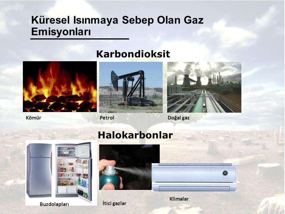 Küresel Isınmaya Sebep Olan Gaz Emisyonları Kömür PetrolDoğal gaz Karbondioksit Halokarbonlar Buzdolapları İtici gazlar Klimalar