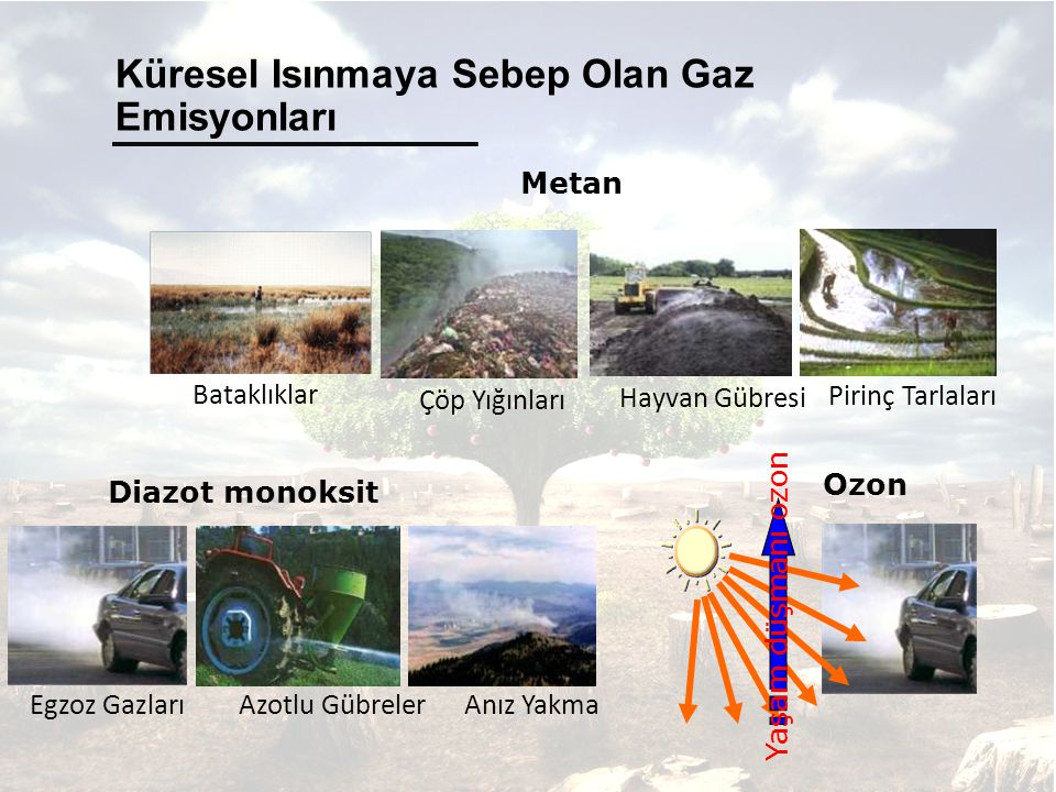 Küresel Isınmaya Sebep Olan Gaz Emisyonları Yaşam düşmanı ozon Ozon Diazot monoksit Egzoz Gazları Azotlu Gübreler Anız Yakma Metan Çöp Yığınları Hayvan Gübresi Pirinç Tarlaları Bataklıklar